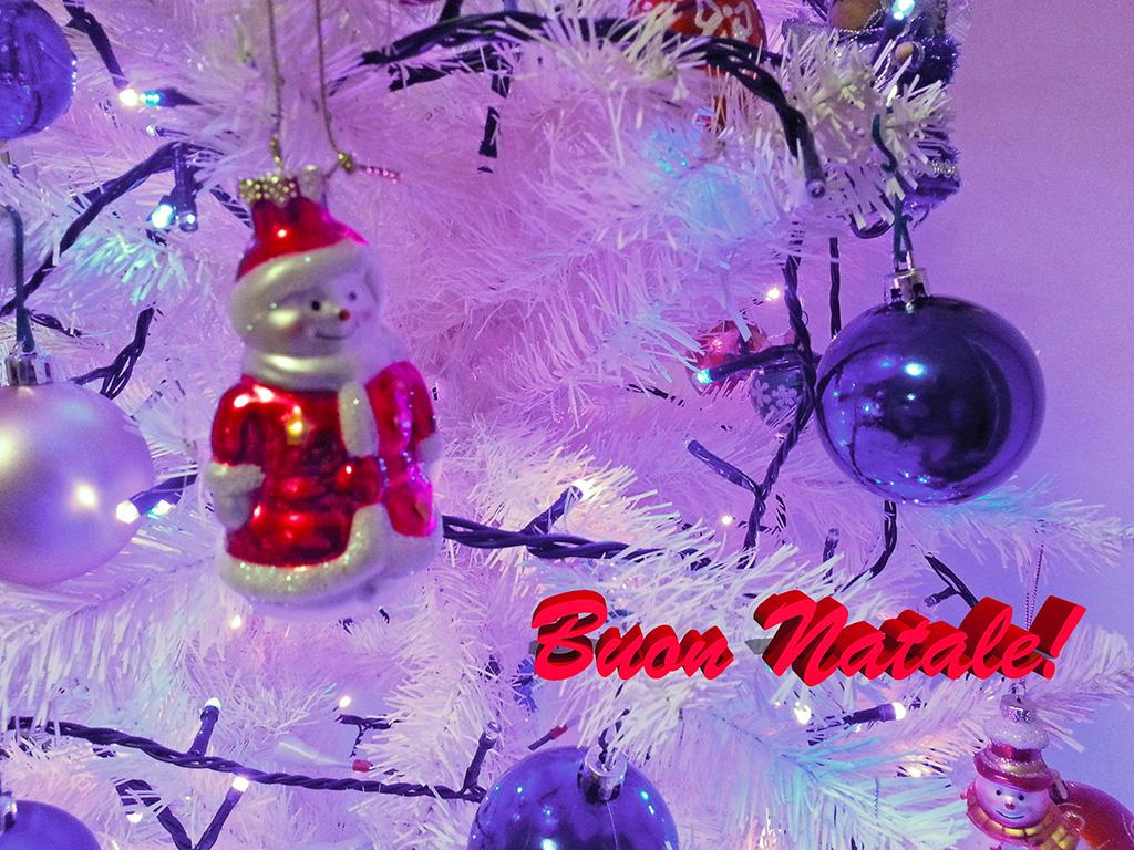 Un Sereno Natale a Tutti! :) File